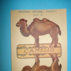 Collectables Paper Dolls - RECORTABLE ANIMALES PLEGABLES - SERIE A - MEDIDAS 12 x 8 cm - 19985360