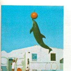 Coleccionismo Recortables: POSTAL SIN CIRCULAR DEL SAFARI PARK VERGEL ALICANTE. Lote 37121823