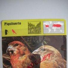 Coleccionismo Recortables: FICHA TECNICA DEL - P I Q U I T U E R T O - DEL AÑO 1975 -. Lote 54302209