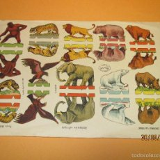 Coleccionismo Recortables: ANTIGUA HOJA DE ANIMALES SALVAJES DOBLES RECORTABLES SERIE IMPERIO 24 EDICIONE LA TIJERA - AÑO 19460. Lote 57181475