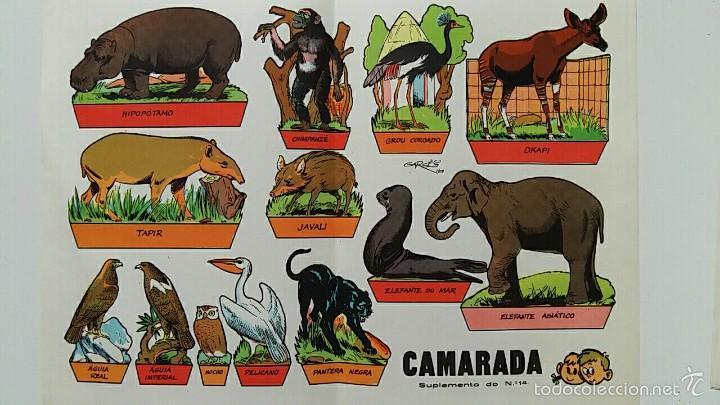HOJA RECORTABLES ANIMALES. GARCES 1959. CAMARADA SUPLEMENTO 14 (Coleccionismo - Recortables - Animales)