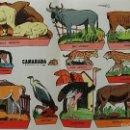 Coleccionismo Recortables: HOJA RECORTABLES ANIMALES. GARCES 1959. CAMARADA SUPLEMENTO 15. Lote 60332671