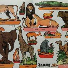 Coleccionismo Recortables: HOJA RECORTABLES ANIMALES. GARCES 1959. CAMARADA SUPLEMENTO 16. Lote 60332783