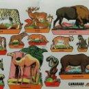 Coleccionismo Recortables: HOJA RECORTABLES ANIMALES. GARCES 1959. CAMARADA SUPLEMENTO 13. Lote 60332887