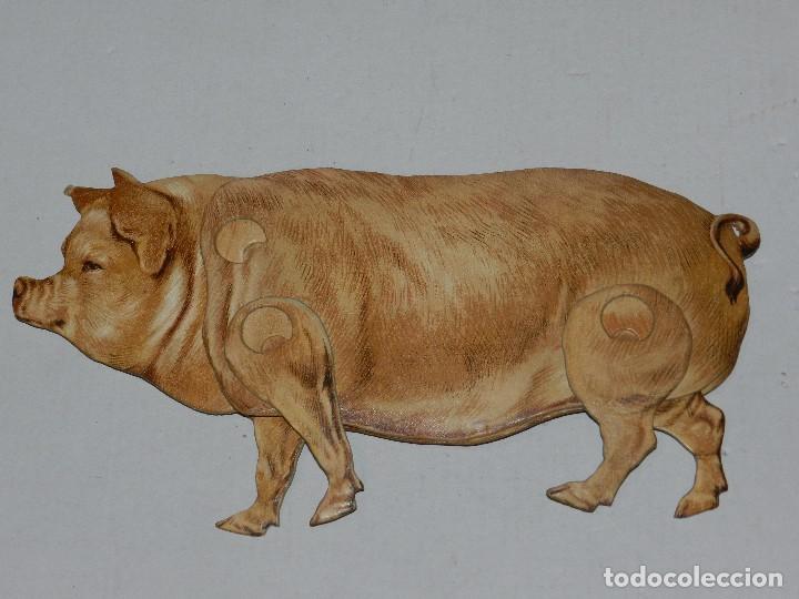 (M) EL CERDO NUM 7 , SUCESORES DE HERNANDO , MADRID , ANIMALES MOVIBLES , 25 X 13 CM (Coleccionismo - Recortables - Animales)