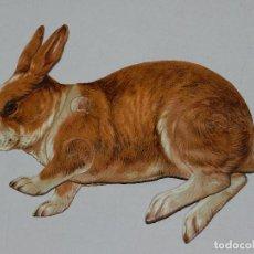 Coleccionismo Recortables: (M) EL CONEJO NUM 8 , SUCESORES DE HERNANDO , MADRID , ANIMALES MOVIBLES , 22 X 18 CM. Lote 67952541