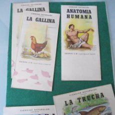 Coleccionismo Recortables: LOTE DE 5 RECORTABLES EDICIONES S.M. 1960. Lote 74313371