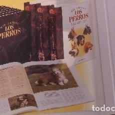 Coleccionismo Recortables: COLECCIÓN MIS AMIGOS LOS PERROS DE PLANETA DE AGOSTINI. Lote 139720193