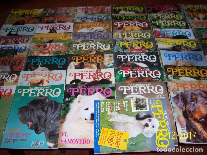 EL MUNDO DEL PERRO,49 EJEMPL..,NOV-91 Nº140 -NOV-95 Nº188,FALTA Nº166.EJEMPLARES SUELTOS 1,50 EUROS. (Coleccionismo - Recortables - Animales)