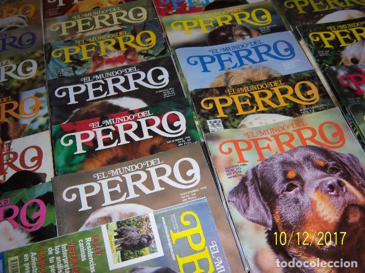 Coleccionismo Recortables: EL MUNDO DEL PERRO,49 Ejempl..,Nov-91 Nº140 -Nov-95 Nº188,Falta Nº166.Ejemplares sueltos 1,50 Euros. - Foto 6 - 100225963
