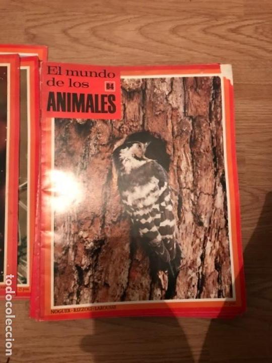 Coleccionismo Recortables: FASCÍCULOS DE LA ENCICLOPEDIA DE LOS ANIMALES - NOGUER / RIZOLLI / LAROUSSE - 1970 - Foto 6 - 107849359