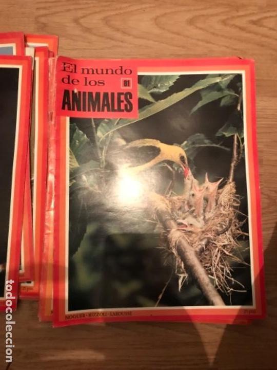 Coleccionismo Recortables: FASCÍCULOS DE LA ENCICLOPEDIA DE LOS ANIMALES - NOGUER / RIZOLLI / LAROUSSE - 1970 - Foto 9 - 107849359