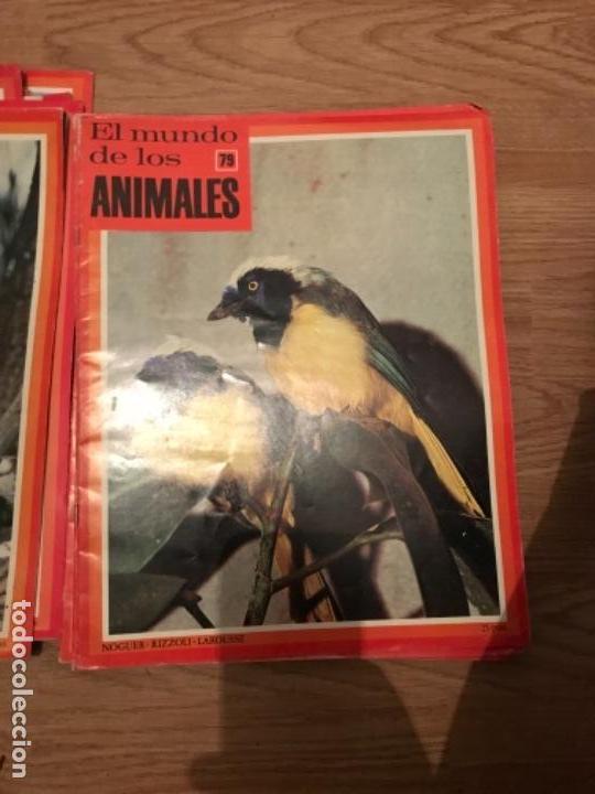 Coleccionismo Recortables: FASCÍCULOS DE LA ENCICLOPEDIA DE LOS ANIMALES - NOGUER / RIZOLLI / LAROUSSE - 1970 - Foto 11 - 107849359
