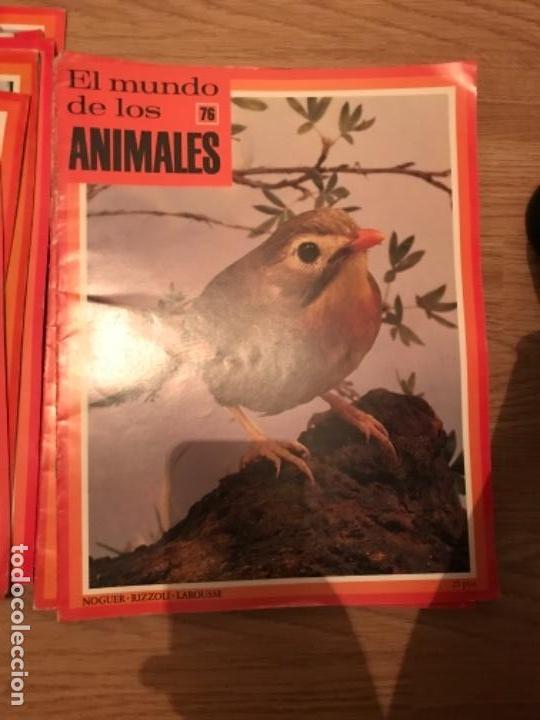 Coleccionismo Recortables: FASCÍCULOS DE LA ENCICLOPEDIA DE LOS ANIMALES - NOGUER / RIZOLLI / LAROUSSE - 1970 - Foto 13 - 107849359