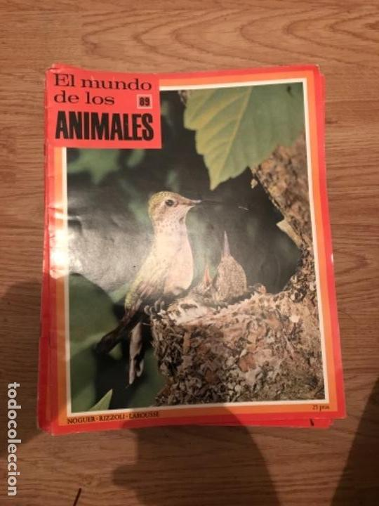 FASCÍCULOS DE LA ENCICLOPEDIA DE LOS ANIMALES - NOGUER / RIZOLLI / LAROUSSE - 1970 (Coleccionismo - Recortables - Animales)