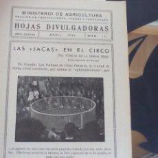 Coleccionismo Recortables: CANARIAS LAS JACAS EN EL CIRCO. Lote 119101603
