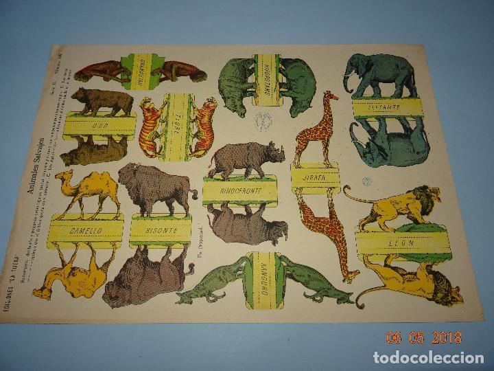 ANTIGUA LÁMINA ANIMALES SALVAJES SERIE 10 Nº 199 RECORTABLE DE EDICIONES * LA TIJERA * AÑO 1930S (Coleccionismo - Recortables - Animales)