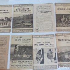Coleccionismo Recortables: HOJAS DIVULGACIÓN DE AVICULTURA GALLINAS. Lote 120389575