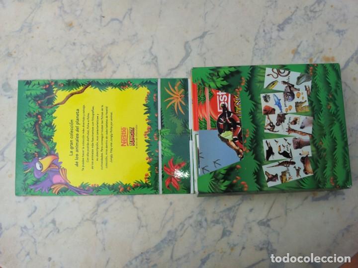 Coleccionismo Recortables: 84 fichas - tarjetas - cromos con estuche. Gran colección de los animales del planeta Nestlé Jungly - Foto 2 - 275586968