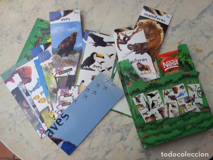 Coleccionismo Recortables: 84 fichas - tarjetas - cromos con estuche. Gran colección de los animales del planeta Nestlé Jungly - Foto 3 - 275586968