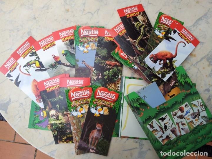 Coleccionismo Recortables: 84 fichas - tarjetas - cromos con estuche. Gran colección de los animales del planeta Nestlé Jungly - Foto 5 - 275586968