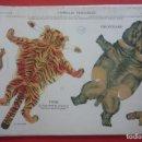 Coleccionismo Recortables: ANIMALES PLEGABLES. 'TIGRE E HIPOPÓTAMO'. EDICIONES LA TIJERA SERIE 10 Nº 214. TAMAÑO 23X33,5 CM.. Lote 135240810