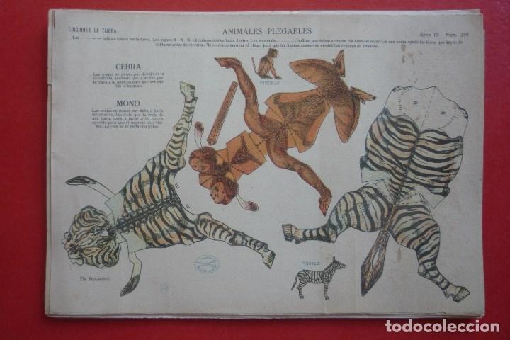 ANIMALES PLEGABLES. 'CEBRA Y MONO'. EDICIONES LA TIJERA SERIE 10 Nº 218. TAMAÑO 23X33,5 CM. (Coleccionismo - Recortables - Animales)