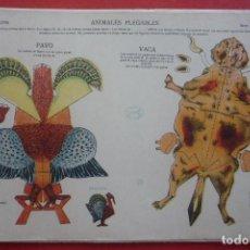Collectables Paper Dolls - ANIMALES PLEGABLES. 'PAVO Y BACA''. EDICIONES LA TIJERA SERIE 10 Nº 219. TAMAÑO 23X33,5 CM. - 135241178