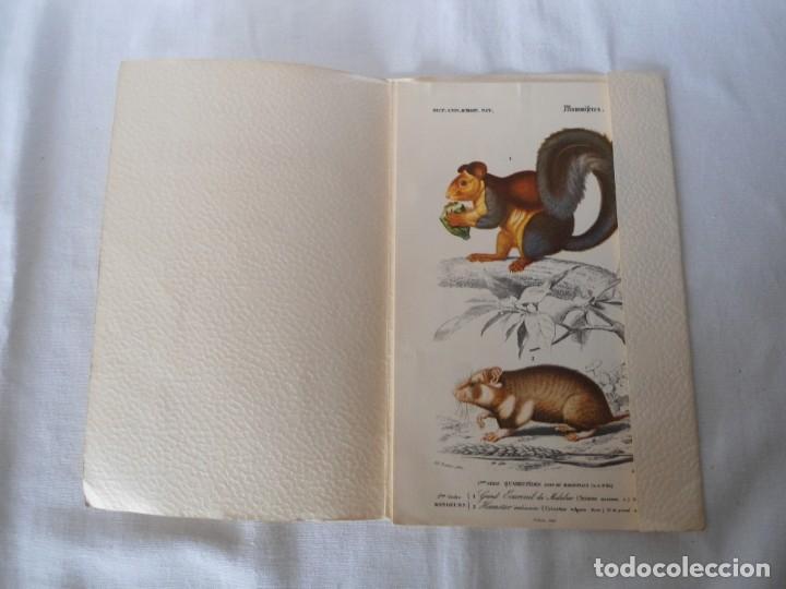 Coleccionismo Recortables: CARPETA OBSEQUIO CON 3 LAMINAS DEL READER·DIGEST AÑOS 70 - Foto 3 - 156464618
