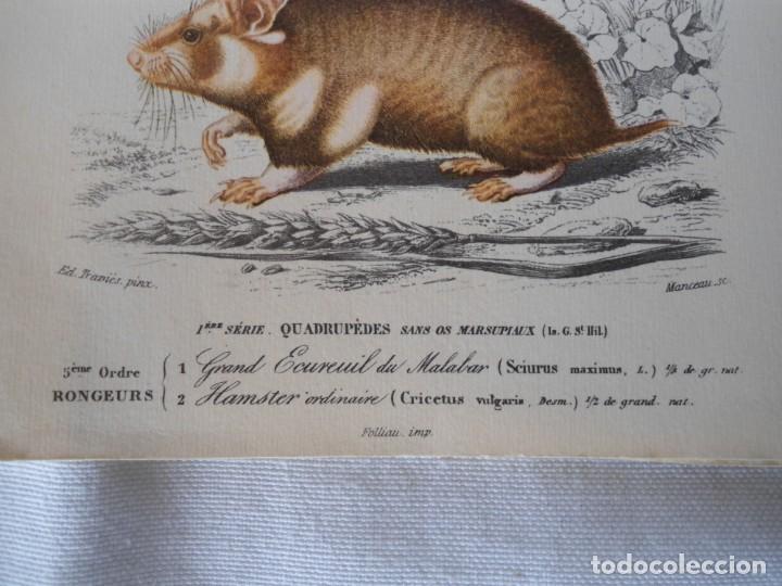 Coleccionismo Recortables: CARPETA OBSEQUIO CON 3 LAMINAS DEL READER·DIGEST AÑOS 70 - Foto 6 - 156464618