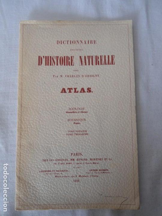 CARPETA OBSEQUIO CON 3 LAMINAS DEL READER·DIGEST AÑOS 70 (Coleccionismo - Recortables - Animales)