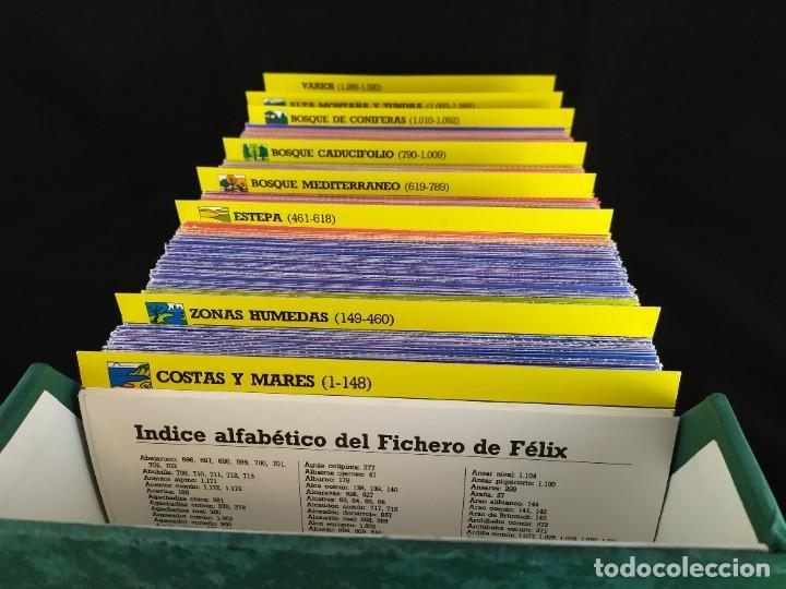 FICHERO DE LOS AMIGOS DE FELIX RODRIGUEZ DE LA FUENTE (1980) 1320 FICHAS ANIMALES EDICIONES URBION (Coleccionismo - Recortables - Animales)