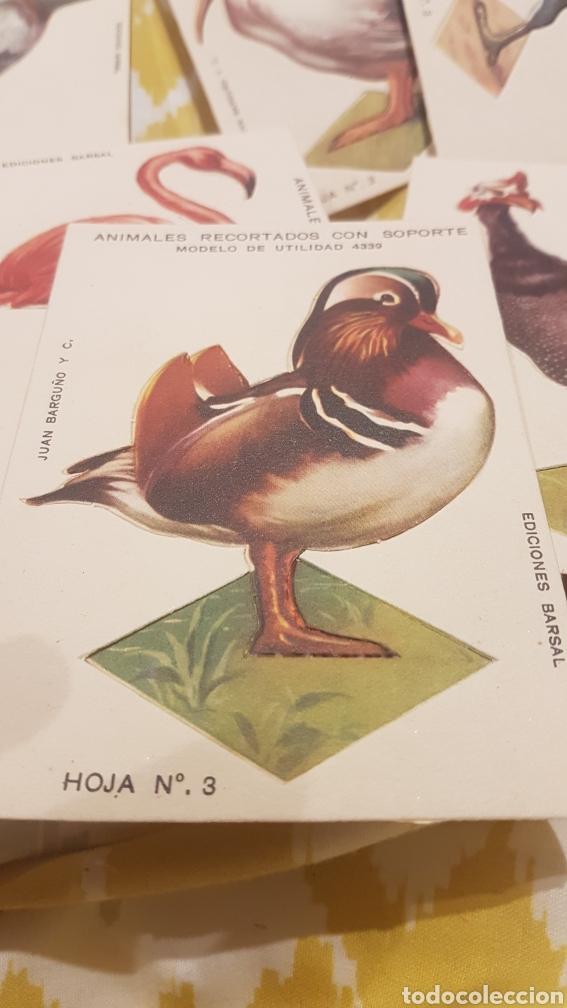 Coleccionismo Recortables: 7 cromos recortables de aves - Foto 2 - 195435966