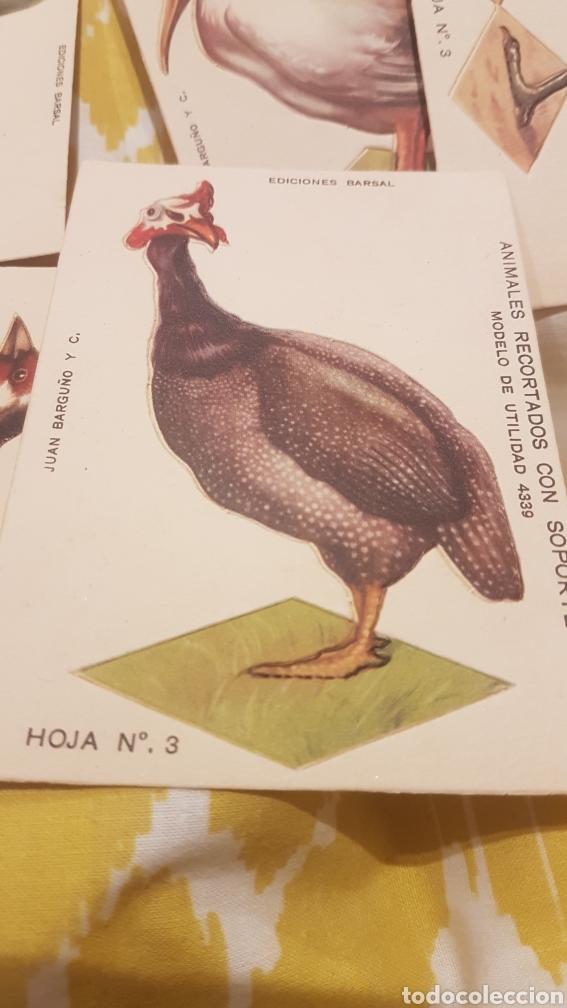 Coleccionismo Recortables: 7 cromos recortables de aves - Foto 4 - 195435966