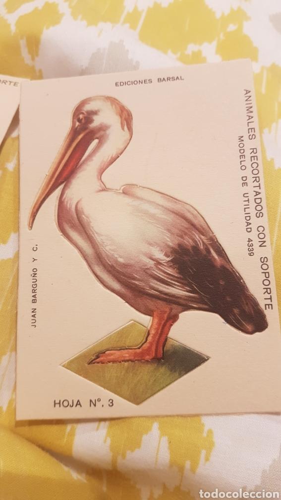 Coleccionismo Recortables: 7 cromos recortables de aves - Foto 5 - 195435966