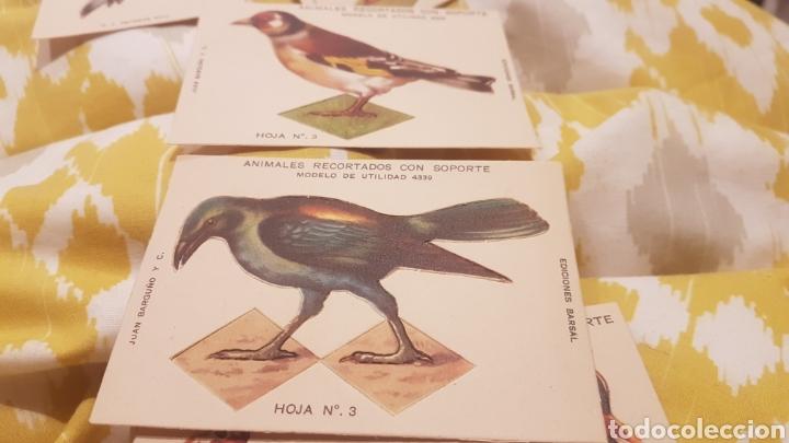 Coleccionismo Recortables: 7 cromos recortables de aves - Foto 6 - 195435966