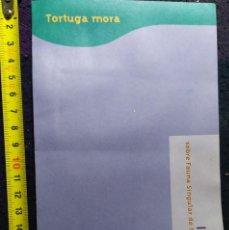 Coleccionismo Recortables: FOLLETO ANIMALES DE MURCIA LA TORTUGA MORA REINO ANIMAL CAJAMAR. Lote 200260111