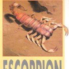 Coleccionismo Recortables: RECORTABLE ESCORPIÓN. RIALP 1990. Lote 232748710