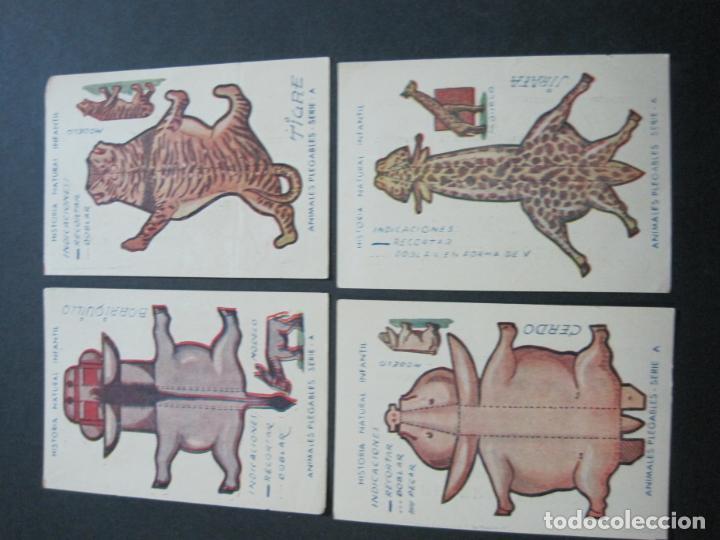 Coleccionismo Recortables: HISTORIA NATURAL INFANTIL-COLECCION DE 20 CROMOS RECORTABLES-PAPELERIA SEDANO-VER FOTOS-(76.902) - Foto 4 - 236022495