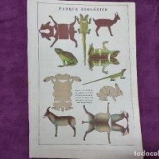 Colecionismo Recortáveis: HOJA CON RECORTABLE DE ANIMALES, PARQUE ZOOLÓGICO, UNOS 29 X 20 CMS. MEDIADOS XX.. Lote 241992050
