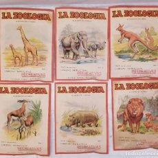 Coleccionismo Recortables: LA ZOOLOGIA AL ALCANCE DE LOS NIÑOS. SERIE B. BARCELONA. ED. ROMA. DEL Nº 1 AL Nº6. 22X16CM. Lote 253099135