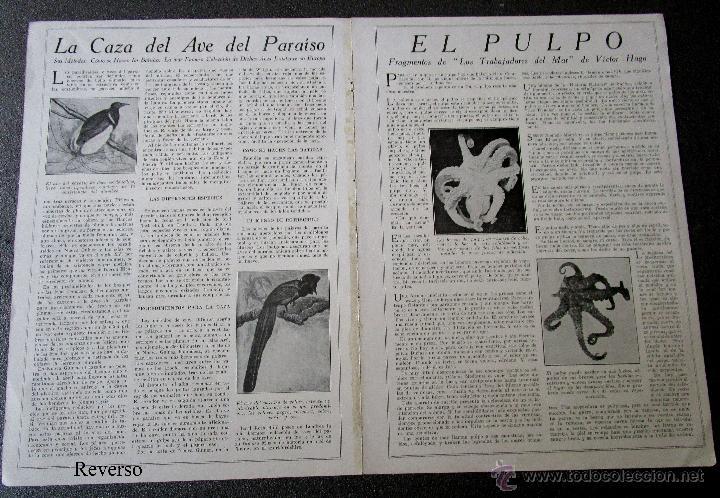 Coleccionismo Recortables: Antigua y original hoja recortable hidroavión para armar Colección Bulliken. Años 20.44 X 30 cm - Foto 3 - 184232263