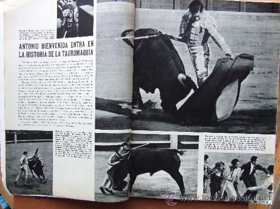 Coleccionismo de Revista Blanco y Negro: ANTONIO BIENVENIDA – REVISTA BLANCO Y NEGRO 2841 OCTUBRE 1966 - Foto 2 - 63598824