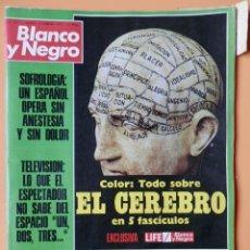 Coleccionismo de Revista Blanco y Negro: BLANCO Y NEGRO. 10 FEBRERO 1973. TODO SOBRE EL CEREBRO. Nº 3171 - DIVERSOS AUTORES. Lote 43525604