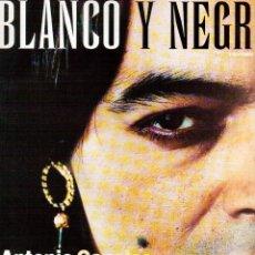 Coleccionismo de Revista Blanco y Negro: 1997. ANTONIO CANALES. DAGOLL DAGOM. NACHO CANO. PALOMA SAN BASILIO. ENYA. CRISTINA TÁRREGA. VER. Lote 140715510