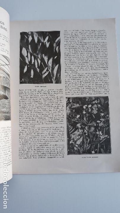 Coleccionismo de Revista Blanco y Negro: REVISTA ILUSTRADA BLANCO Y NEGRO, NUMERO 1613, 16 ABRIL 1922. W - Foto 2 - 142563682