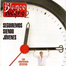 Coleccionismo de Revista Blanco y Negro: 1993. LYDIA BOSCH. DARYL HANNAH. SHONA DWYRE. JAMIE LEE CURTIS. LUZ DE LUNA. CRISTINA SÁNCHEZ. VER. Lote 144781774