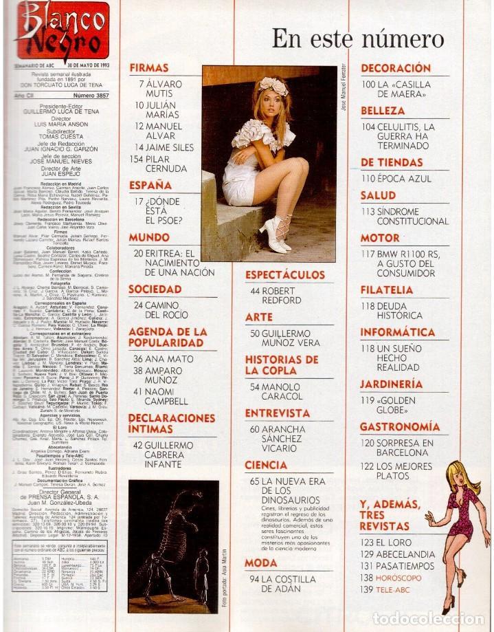 Coleccionismo de Revista Blanco y Negro: 1993. AMPARO MUÑOZ. NAOMI CAMPBELL. JUDIT MASCÓ. ARANCHA SÁNCHEZ VICARIO. ASSUMPTA SERNA. VER. - Foto 2 - 144801534