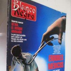 Collectionnisme de Magazine Blanco y Negro: BLANCO Y NEGRO SEMANARIO DE ABC 24-10-1993 ERRORES MEDICOS . Lote 152226702