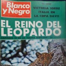 Coleccionismo de Revista Blanco y Negro: REVISTA BLANCO Y NEGRO. Nº 2934 - 1968 EL REINO DEL LEOPARDO. Lote 157218658
